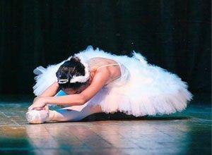 bale-danscisi